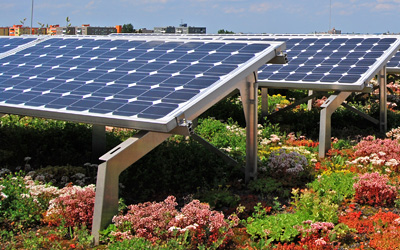 Green roof and photovoltaics