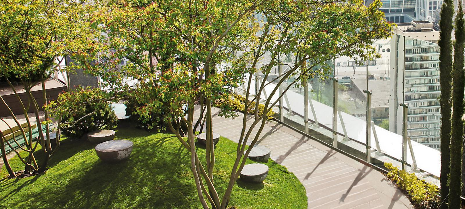 Roof garden with circular lawn patch and trees